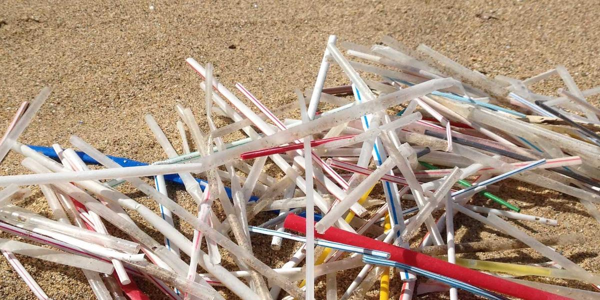 the last plastic straw booterstown
